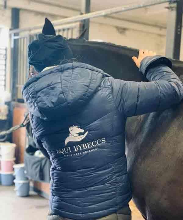Boka hästmassage skåne - Vellinge - Malmö - Trelleborg - certifierad och legitimerad hästmassör och hästmassage