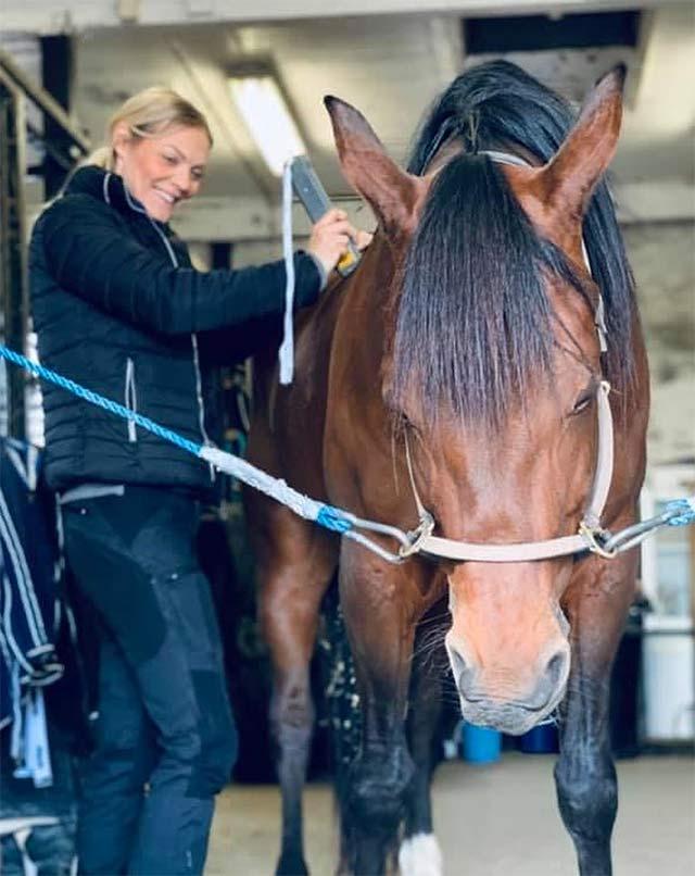 Hästmassage och hästterapi i Vellinge - Malmö och Trelleborgs kommun - Höllviken Skanör och Falsterbo - Behandla häst