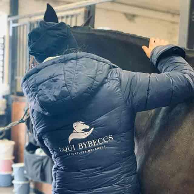 Hästmassage pris och prislista - Hästmassage i Skåne utgår ifrån Vellinge kommun